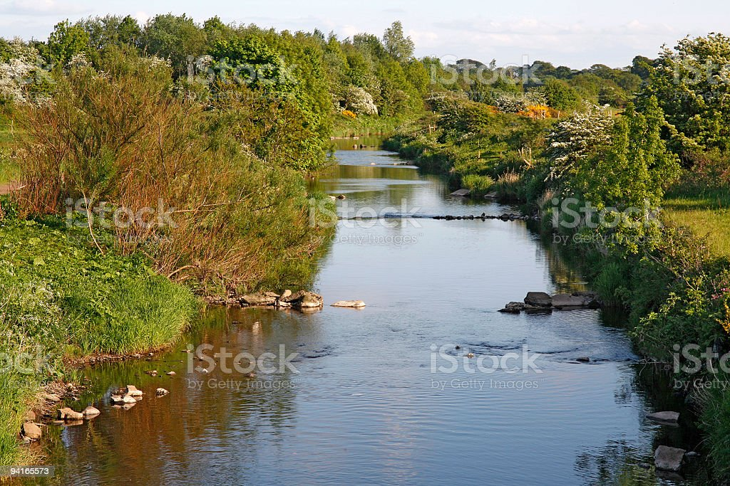 River in late Spring royalty-free stock photo