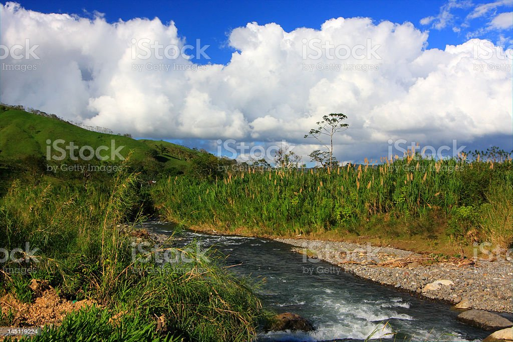 River in Monteverde (Costa Rica) royalty-free stock photo