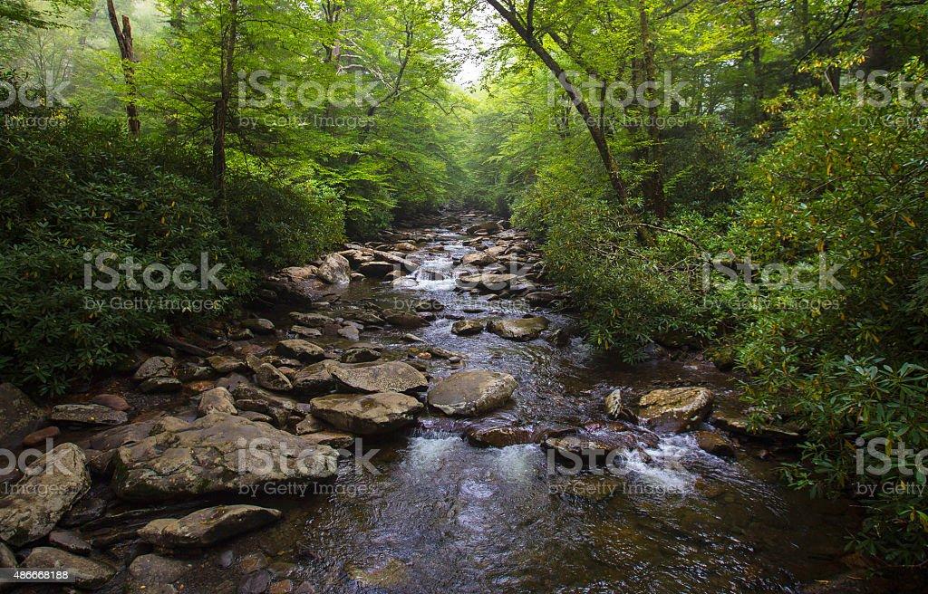 River in North Carolina stock photo