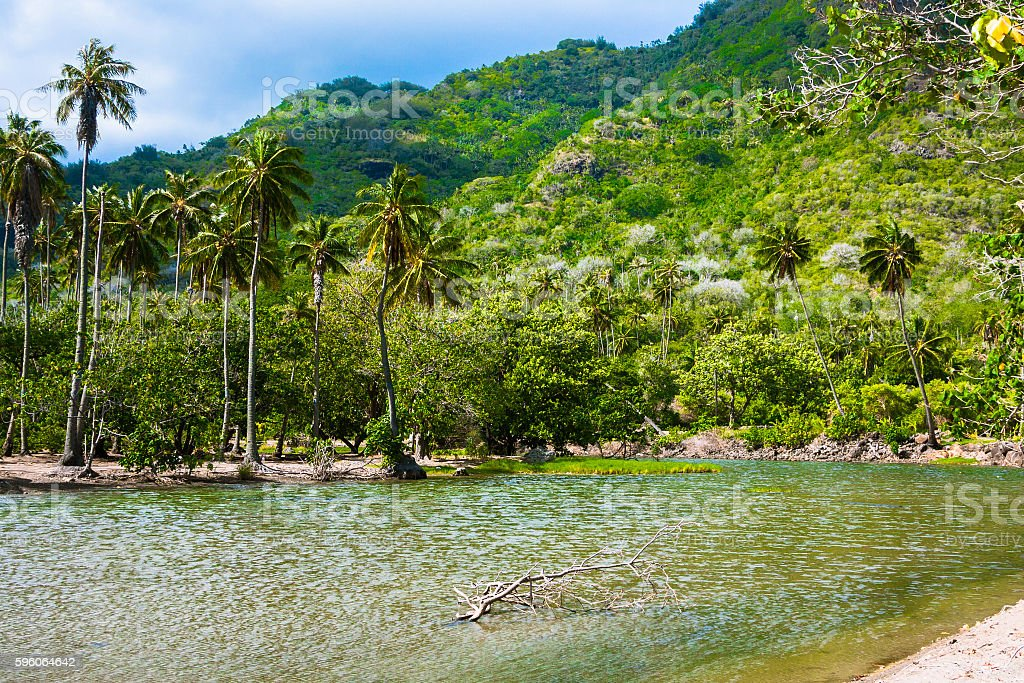 River in Nuku Hiva stock photo