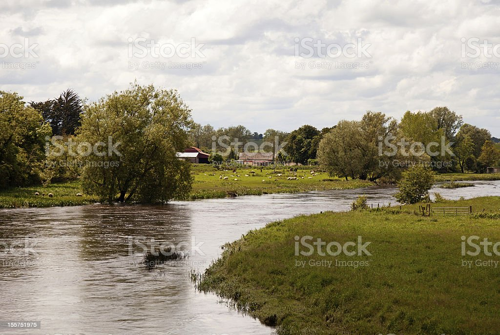 River in summer, Ireland royalty-free stock photo