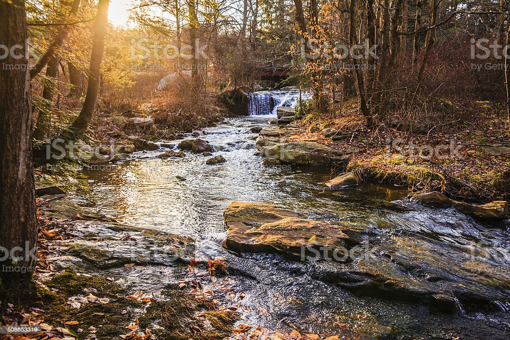 River in the forest in the Poconos, Pennsylvania stock photo