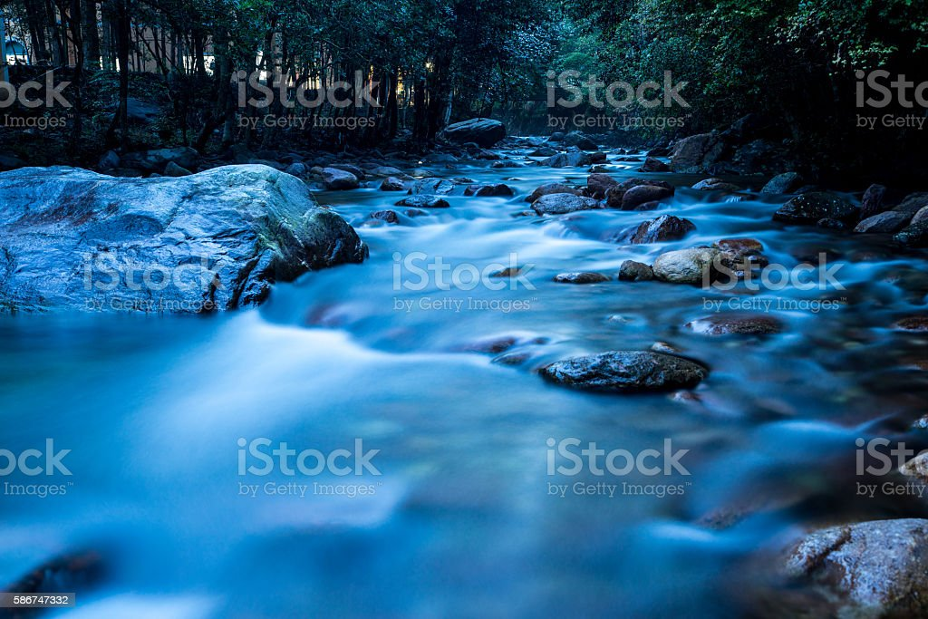 River in the forest stock photo