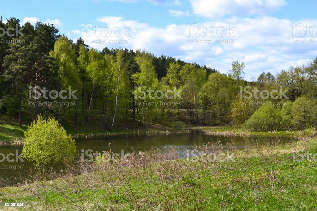 River in the forest. Russia. Moscow region stock photo