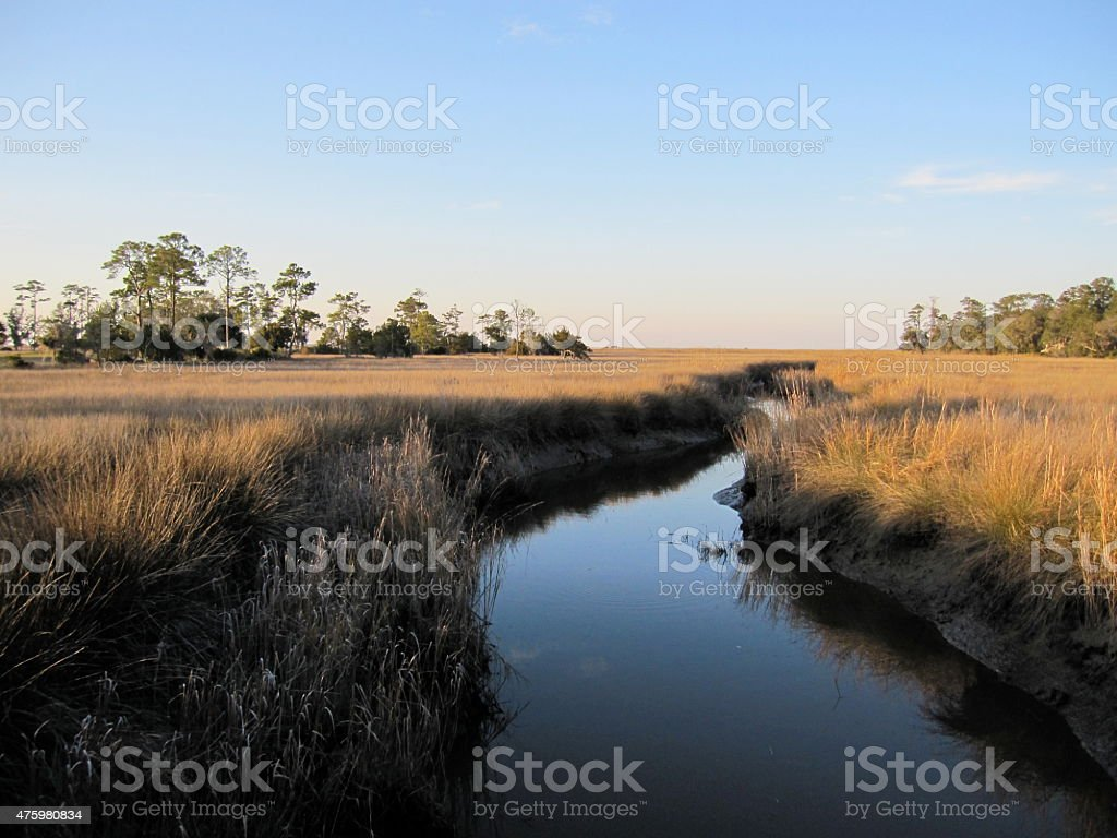 River in the Golden Isles stock photo
