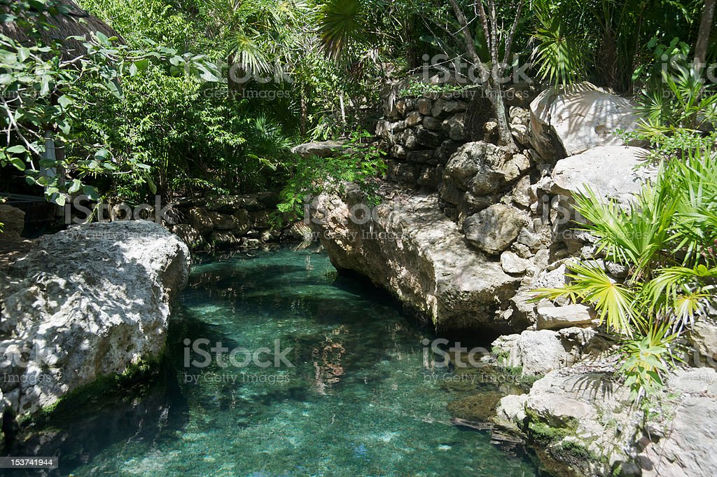 River in the Mayan Riviera royalty-free stock photo