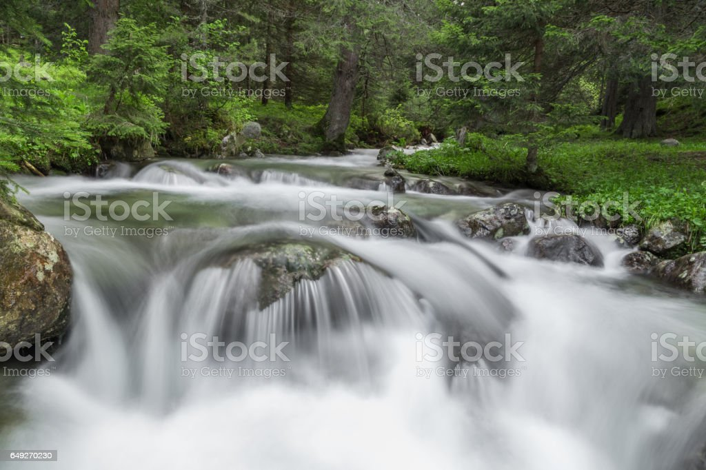 River in the mountain in spring stock photo