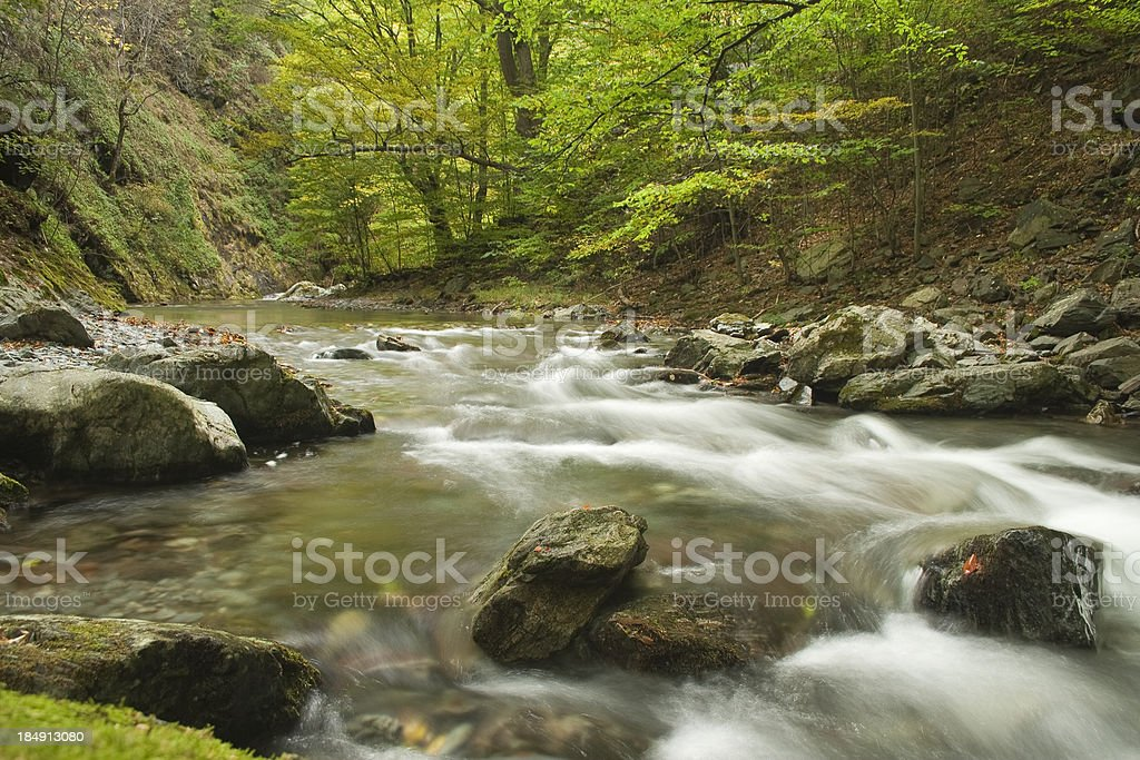River in the mountain royalty-free stock photo