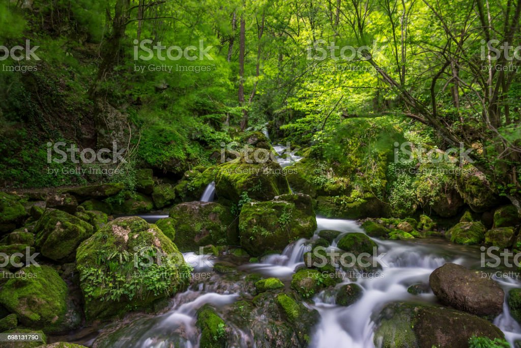 River in the mountains of Bulgaria stock photo