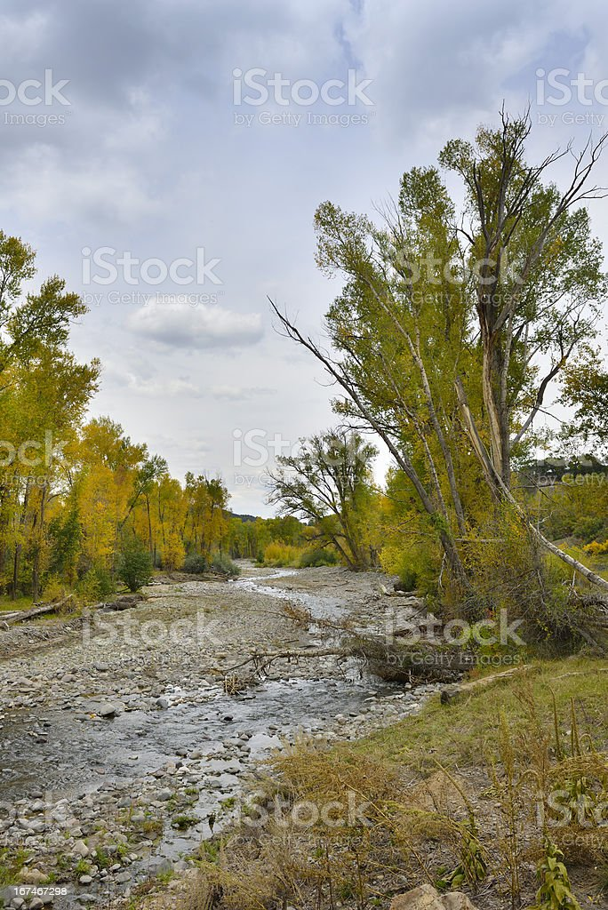 river in the mountains of colorado royalty-free stock photo