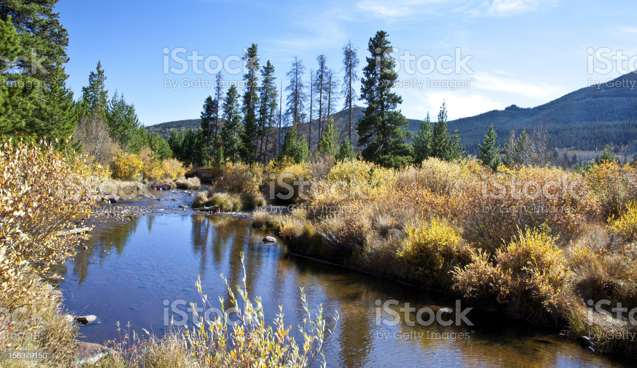 River in the Rockies royalty-free stock photo