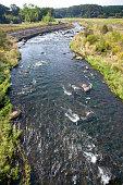 River in Tochigi prefecture