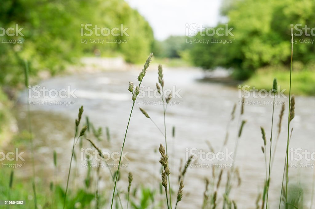 River in Toronto stock photo