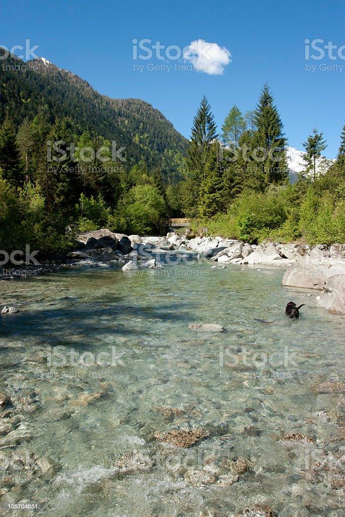 River in Val di Genova, Trentino Alto Adige, Italy stock photo