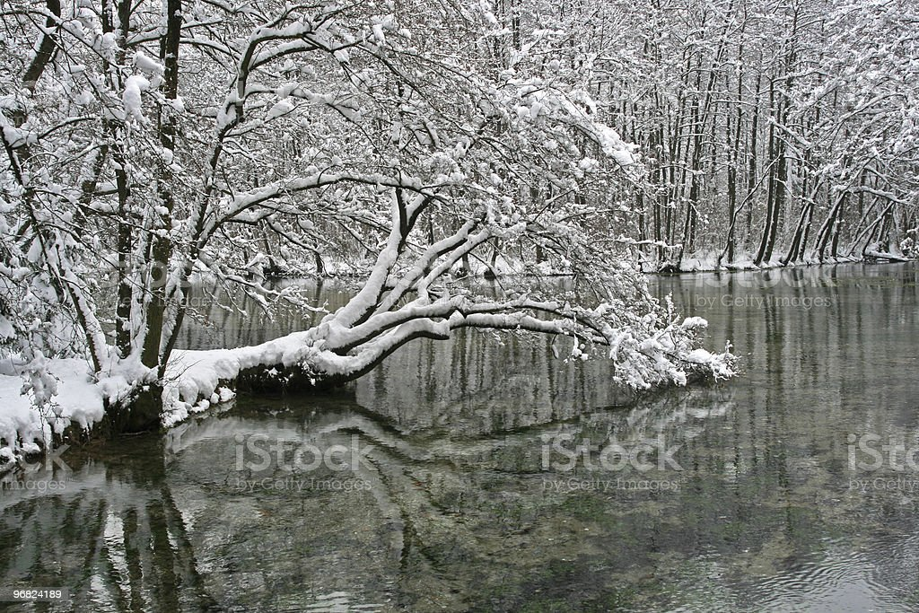 River in Winter royalty-free stock photo