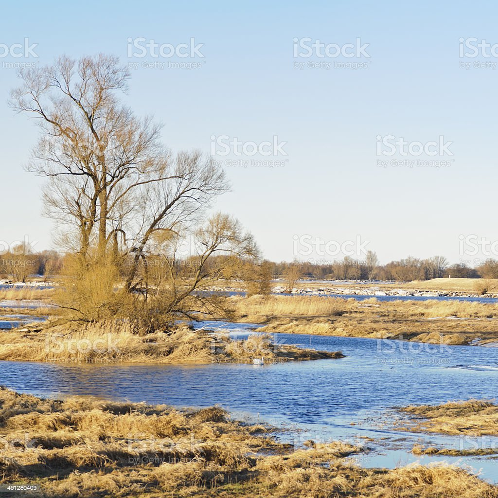 River landscape in the winter stock photo