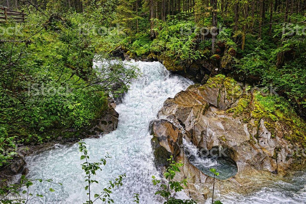 river landscape (Austria). royalty-free stock photo