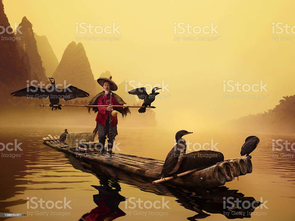 River Lee Cormorant Fisherman stock photo