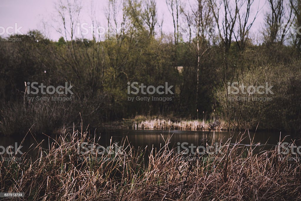 River Misbourne in the Chilterns, England Vintage Retro Filter. stock photo