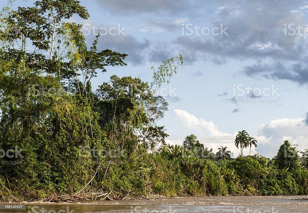 River Napo near Misahualli, Ecuador stock photo