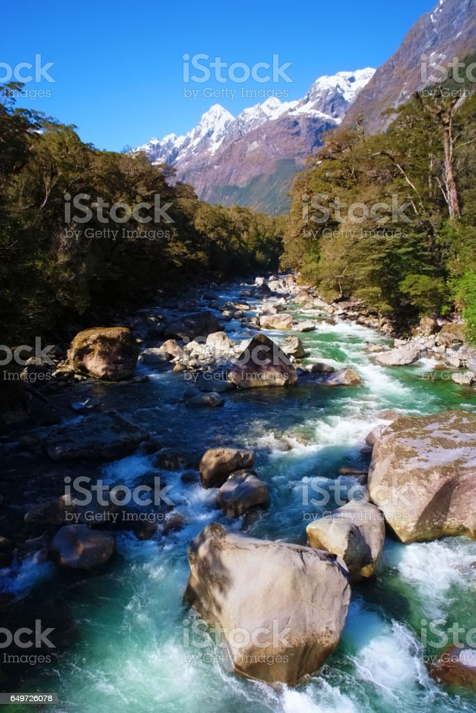 River Near Milford Sound, On New Zealand's South Island stock photo