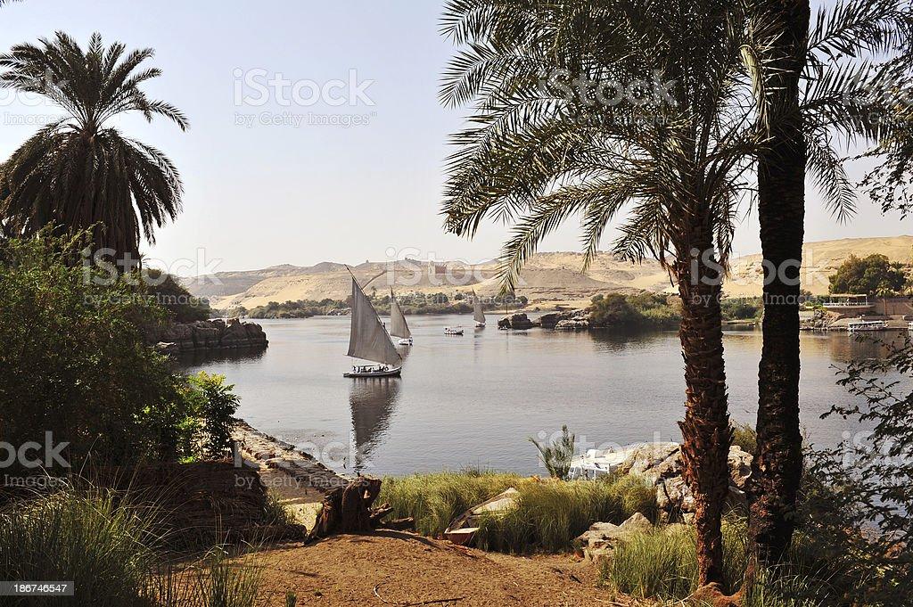 River Nile royalty-free stock photo