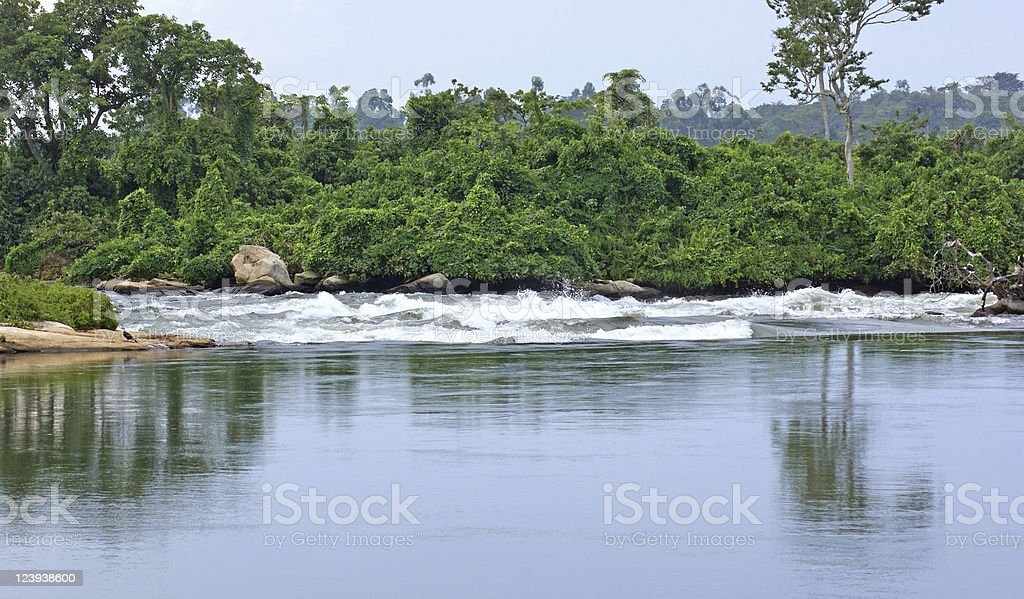River Nile scenery near Jinja in Africa royalty-free stock photo