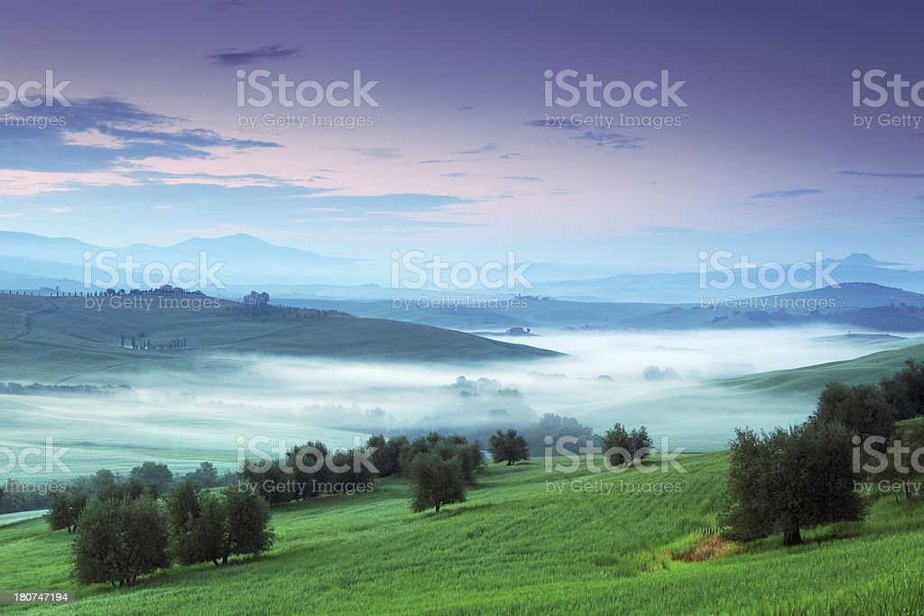 River of fog royalty-free stock photo