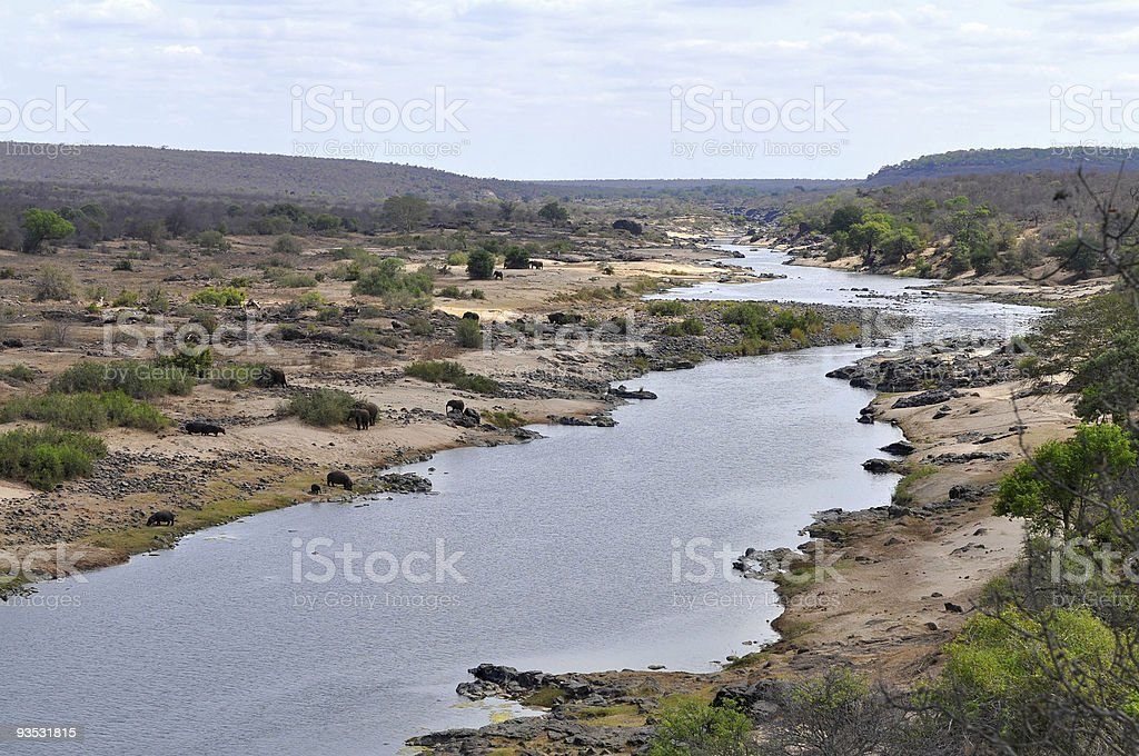 river Olifants with animal,Kruger NP,South Africa stock photo