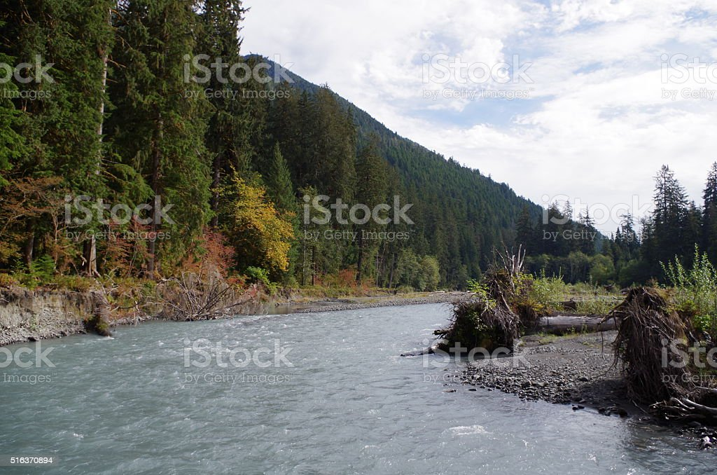 River on a calm day stock photo