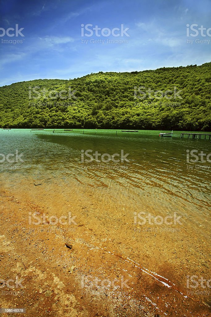 River on forest background royalty-free stock photo