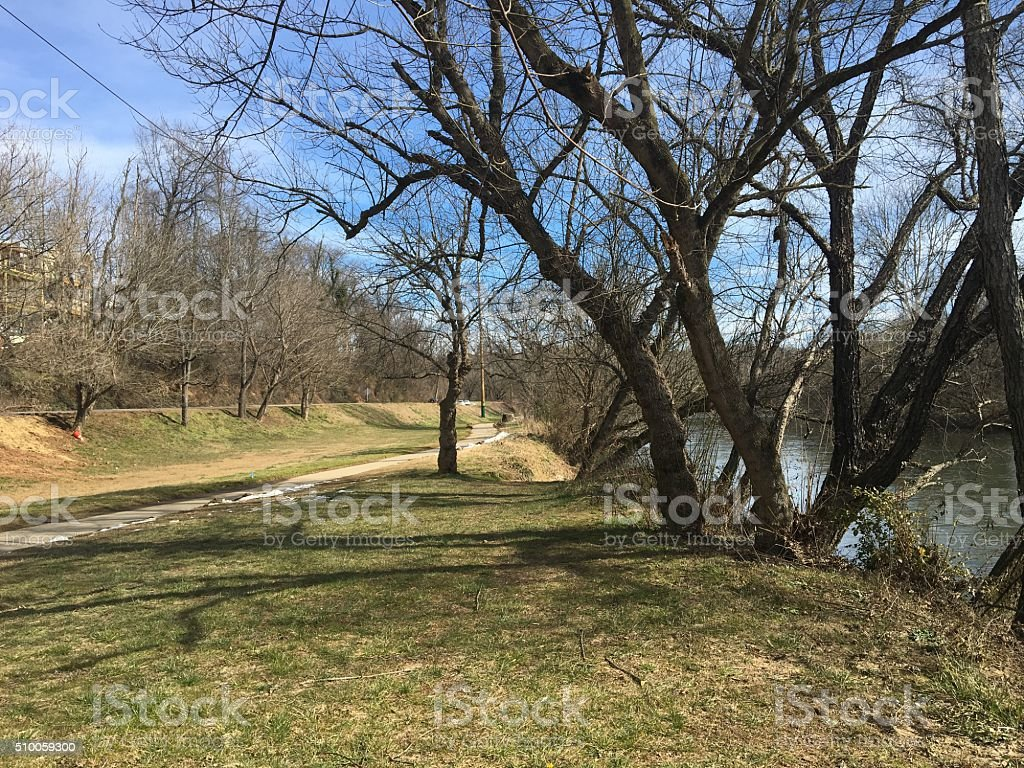 River park with bare trees stock photo