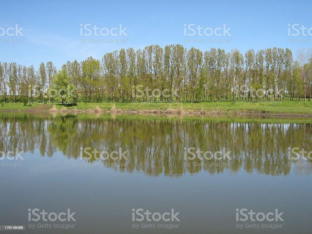 River. royalty-free stock photo