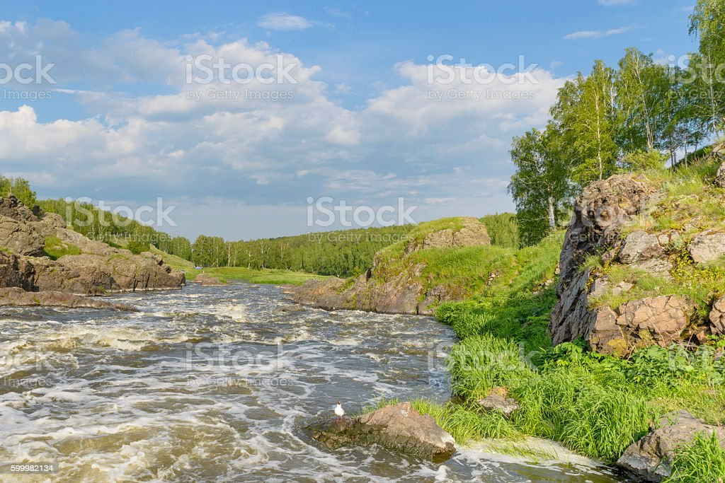 river rapids on a background of rocks summer day stock photo