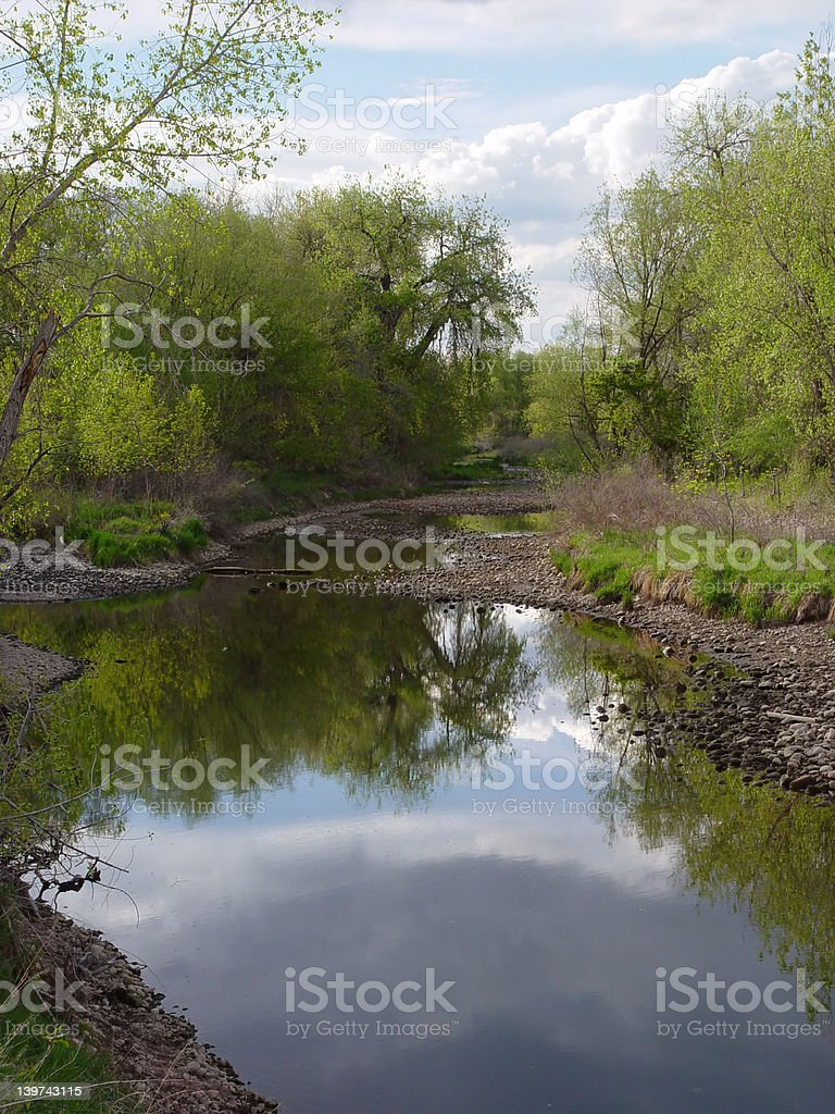 River Reflections royalty-free stock photo