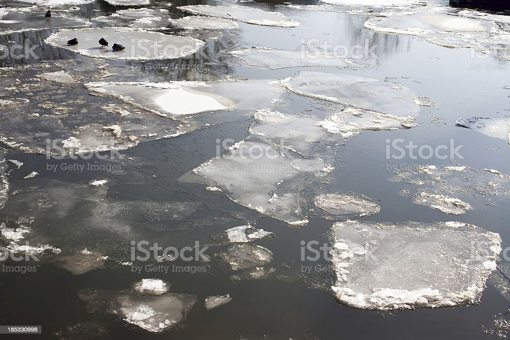 River Rhine in cold winter royalty-free stock photo