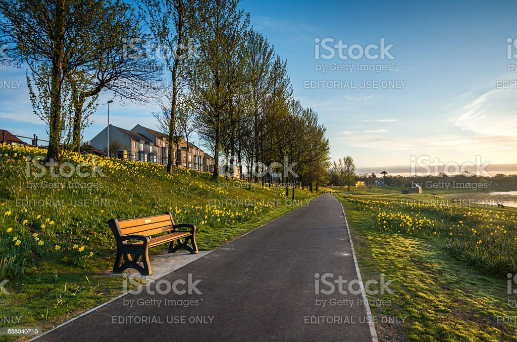 River Seat and Path stock photo