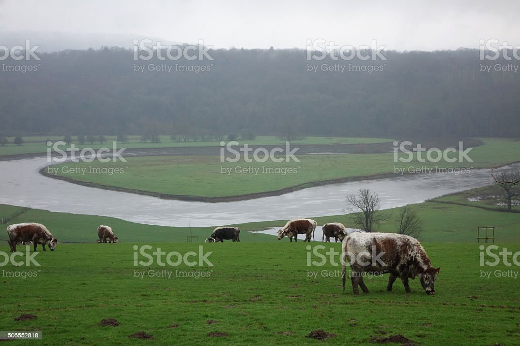 River Severn stock photo