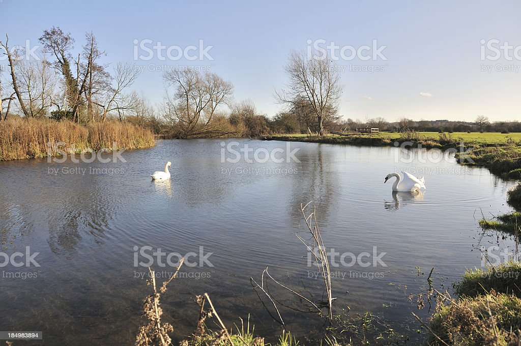 River Stour at Flatford. stock photo