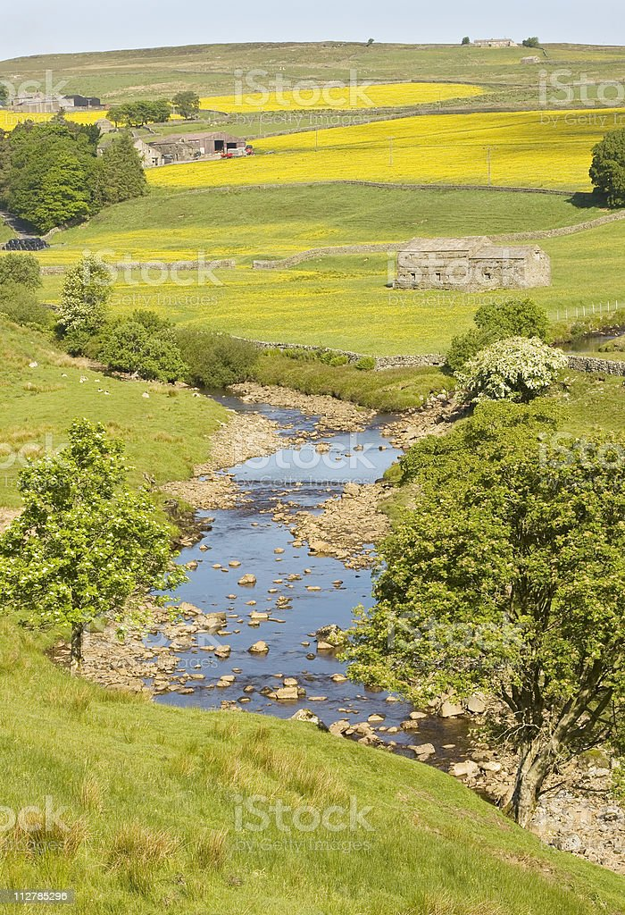 River Swale stock photo
