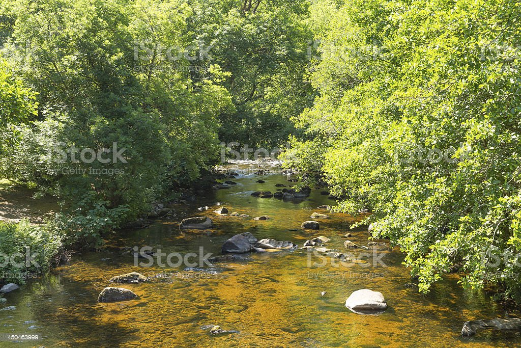 River Teign Fingle Bridge Dartmoor Devon National Park royalty-free stock photo