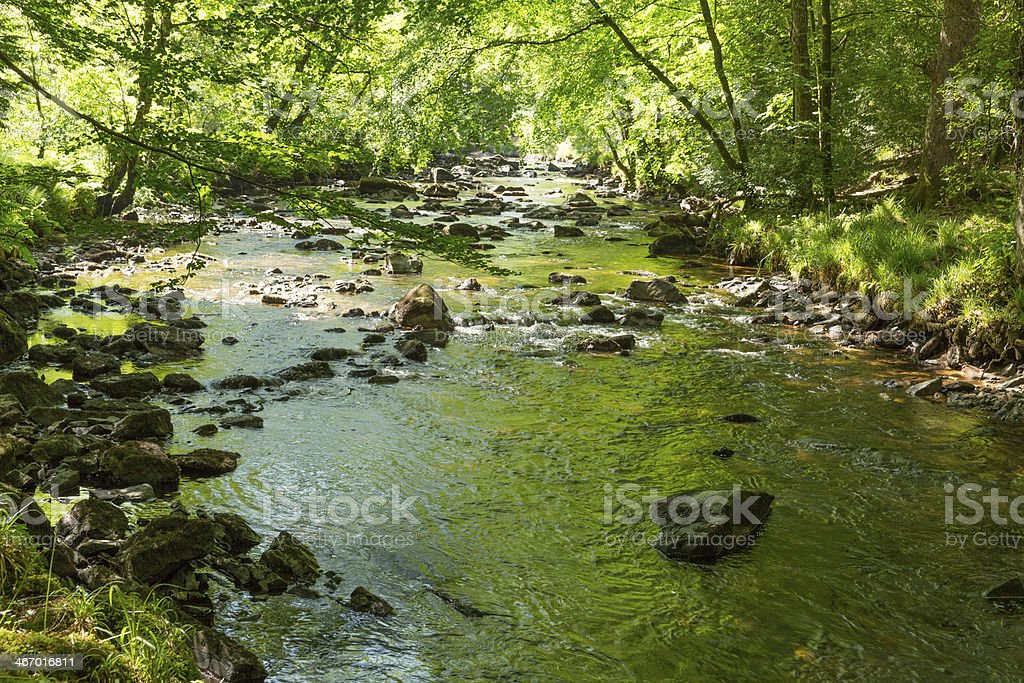 River Teign Fingle Bridge Dartmoor Devon National park royalty-free stock photo