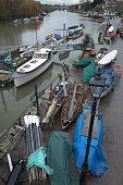 River Thames Scene