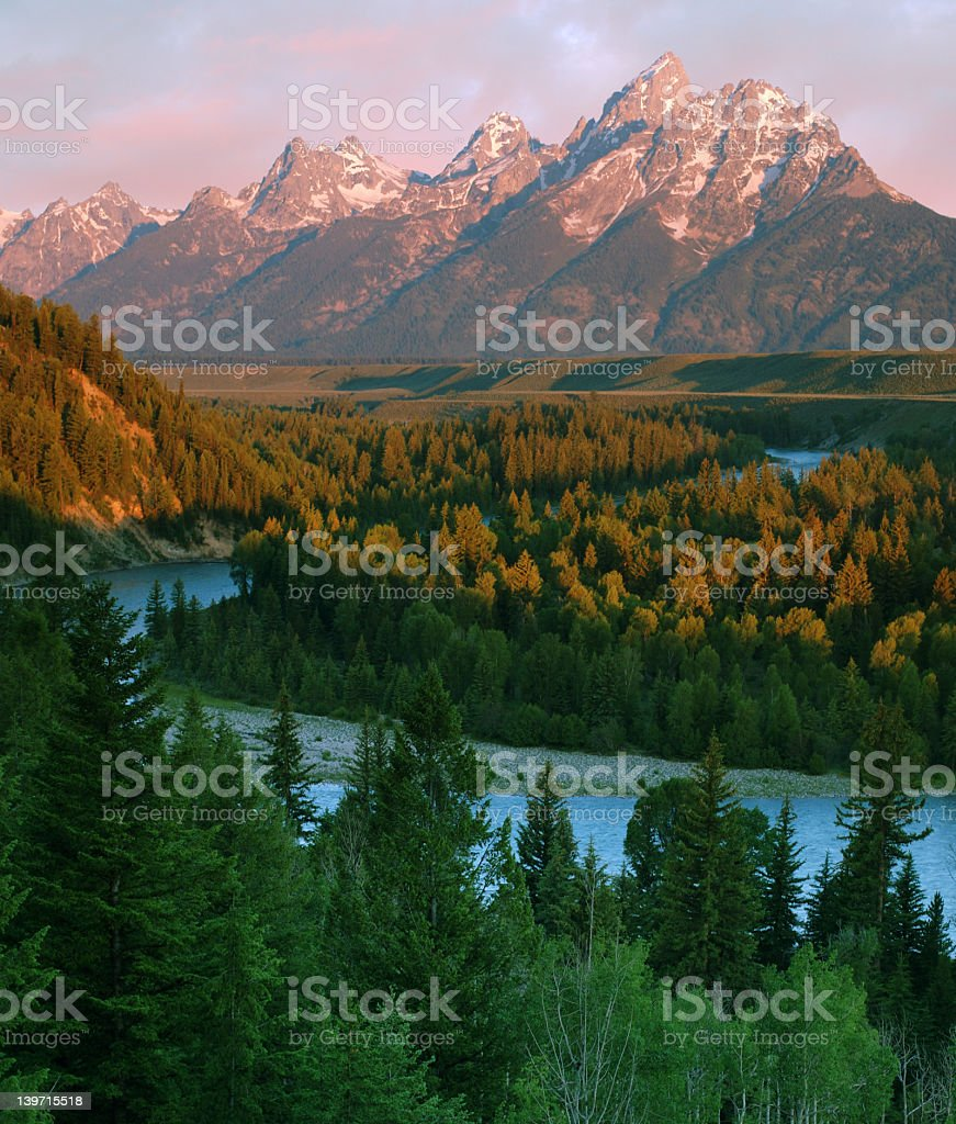 River through a forest in the Grand Teton with mountain view stock photo