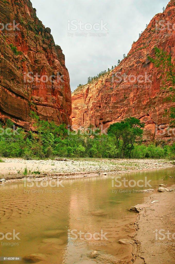 River through Zion stock photo