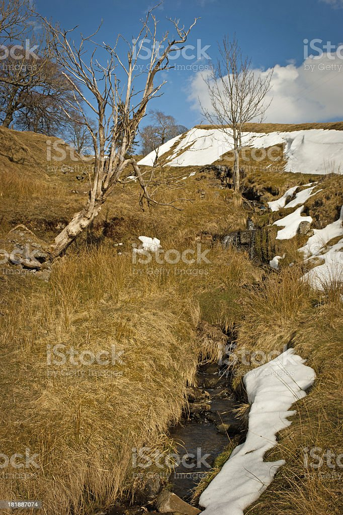 River Tyne tributary with snow stock photo