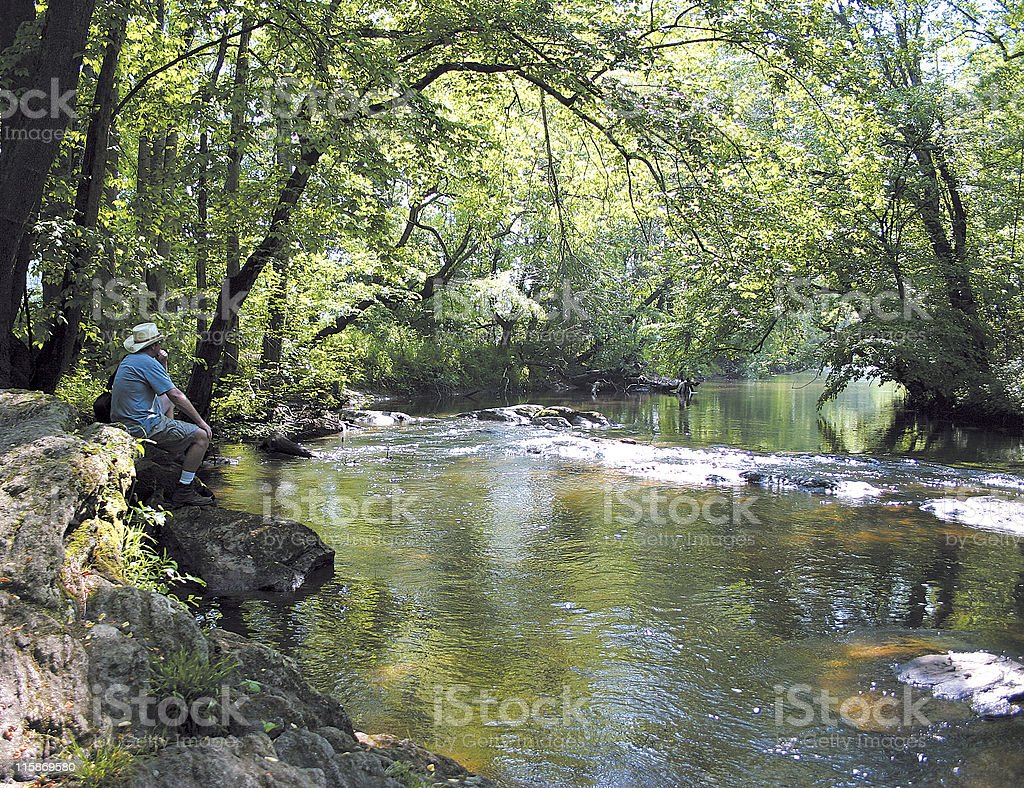 River Watching royalty-free stock photo