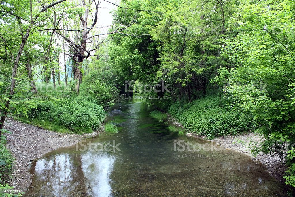 River water stock photo