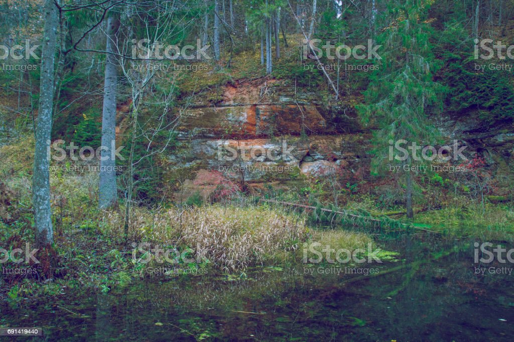 River with cliffs in Latvia. stock photo