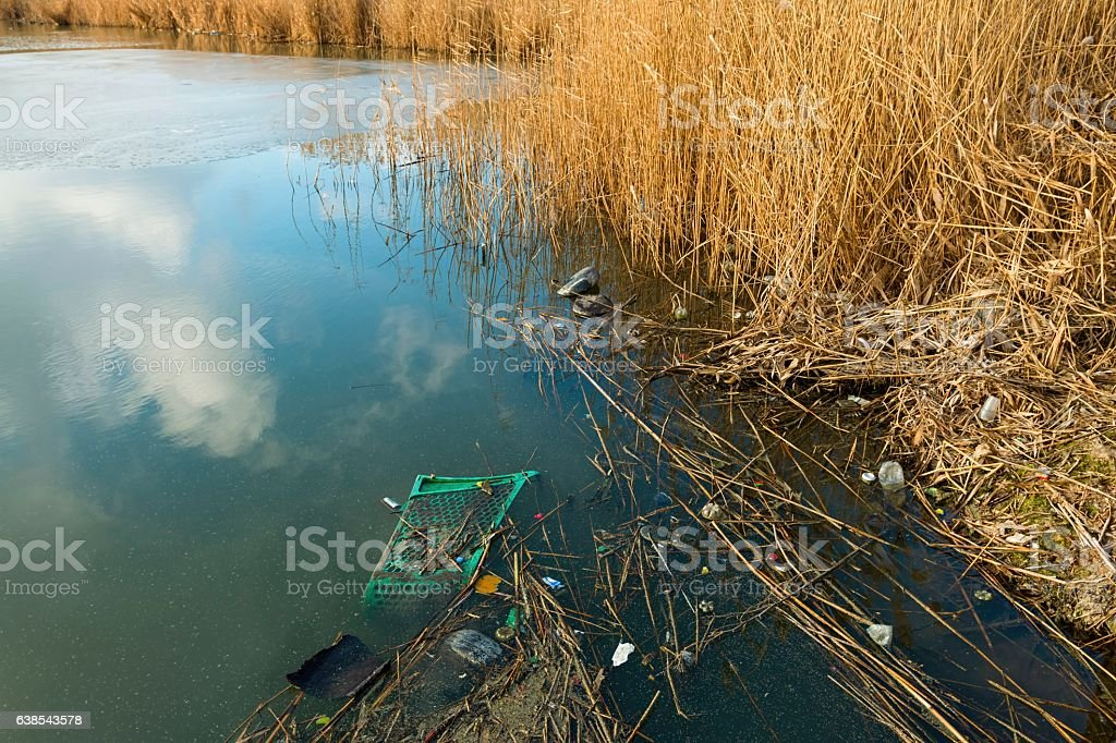 River with floating trash, nature and environment. stock photo